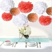Saitec ® 18PCS Mixed Coral Peach White Party Tissue Pom Poms Wedding Flowers Birthday Anniversary Paper Hanging Decoration