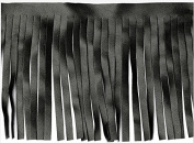 5yards Craft Black Pu Fringe Tassel Trimming Lace Trim for Latin Dress Samba Stage Clothes Curtain Shoes 10cm T560