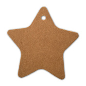 LWR Crafts 100 Hang Tags Star with Jute Twines 30m