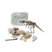 Protocol Dinosaur Fossil Kit