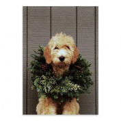 Deck the Paws Holiday Half Notecards