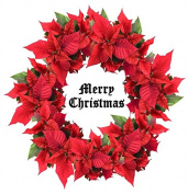 EDIBLE ICING Poinsettia Christmas Wreath ROUND 19cm Cake Topper Decoration Idea