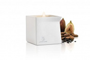 New - Afterglow Natural Massage Candle Cocoa & Amp; Fig Jimmyjane