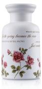 Pretty Valley Home - Ceramic Aroma DiffuserÐRose
