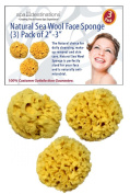 "Special Introductary Offer! Save 50% - Face Sea Wool Sponge 5.1cm - 7.6cm (3) Pack by Spa Destinations® ""Creating The In Home Spa Experience"" $15.00 Value! While Supplies Last!!!"