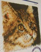 Latch Hook Kit - Tabby (Cat) By Wonderart