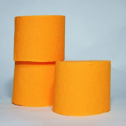 Quasimoon Orange Crepe Paper Streamer Party Decorations (60m Total, 3 Pack) by PaperLanternStore