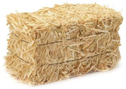FloraCraft Straw Bales, 13cm -by-15cm -13- Inch Bale