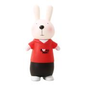 Baidecor PP Red Lovely Rabbit Money Box Piggy Bank