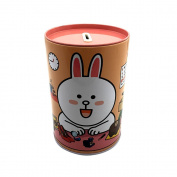 Baidecor Tinplate Rabbit Money Box Piggy Bank