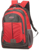 High Class Double Shoulders Backpack Nice for School Students