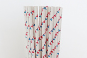 Red and Blue Pennant Banner Paper Straws