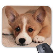 lisaKim Adorable Corgi Puppy Office & Gaming Rectangle Mouse Pad in 250mm*200mm*3mm