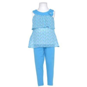 Girls 4T Cute Blue Heart 2pc Sleeveless Top Leggings Spring Outfit
