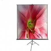 Elite Screens T71SB Tripod B Series 1:1, 180cm Diagonal (130cm x 130cm ) Projector Screen with Black Casing