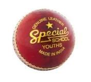 Readers Special School Junior Cricket Ball - PACK OF 6 BALLS
