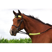 Reflective Horse Riding Nose/Rein/Brow/Strap Band - Soft & Waterproof Fabric - Attaches to any part of your bridle or martingale