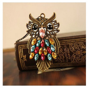 Vintage Colourful Rhinestone Bronze Owl Sweater Chain Pendant Necklace by 24/7 store