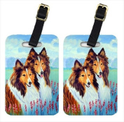 Carolines Treasures 7086BT Two Sable Shelties Luggage Tags, Pack - 2