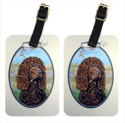 Carolines Treasures 7089BT Irish Water Spaniel Luggage Tags, Pack - 2