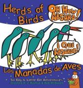 Herds of Birds, Oh How Absurd!