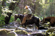 Big Creek Horseback Ride in California for Two - Tinggly Voucher / Gift Card in a Gift Box