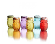 Style Setter 206242-6GB Owl Colours Jars with Lids (Set of 6), Multicolor