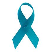 Turquoise Satin Awareness Ribbons - Bag of 250 Lapel Ribbons w/ Safety Pins