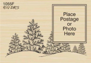 Winter Tree Postage Frame Rubber Stamp By DRS Designs