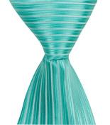 Matching Tie Guy 4235 G4 - 15cm . Newborn Zipper Necktie - Green
