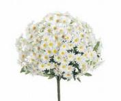 FBD313-WH 43cm . White Daisy Bush x 24- Case of 12