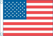 Taylor Made Products 50 Star Us Boat Flag