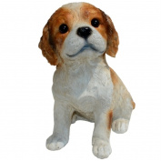 Michael Carr Designs MCD80092 Cavalier King Charles Spaniel Small