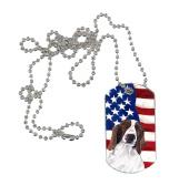 Carolines Treasures SC9024DT USA American Flag with Welsh Springer Spaniel Dog Tag