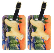 Carolines Treasures SS8182BT Wheaten Terrier Soft Coated Luggage Tags Pack - 2