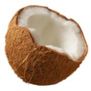 Coconut High Quality Fragrance Oil. 10ML.