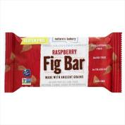 Natures Bakery 60ml Gluten Free Fig Bar - Raspberry - Case Of 12