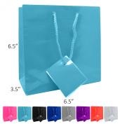 Novel Box® Aqua Glossy Laminated Euro Tote Paper Gift Bag Bundle 6.5X3.5X6.5 (10 Count) + Custom NB Pouch