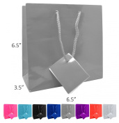 Novel Box® Grey Glossy Laminated Euro Tote Paper Gift Bag Bundle 6.5X3.5X6.5 (10 Count) + Custom NB Pouch
