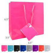 Novel Box® Hot Pink Glossy Laminated Euro Tote Paper Gift Bag Bundle 6.5X3.5X6.5 (10 Count) + Custom NB Pouch