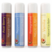 All-natural Therapeutic Lip Balm for Dry and Chapped Lips - Four Flavour Multi-pack for Men, Women and Teens - Moisturising Beeswax Treatment with Aloe Vera, Shea Butter and Vitamin E - USA Made By Maple Holistics