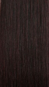 Freetress Equal Synthetic Lace Front Wig - Box Braid-99J
