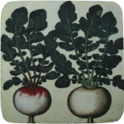Pack of 8 Absorbent Antique Style Radishes Vegetable Print Cocktail Drink Coasters 10cm