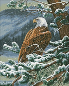 The Eagle Counted Cross Stitch Kit Egypt Cotton Thread 14ct ,196x244stitch 46x55cm Cross Stitch Kits