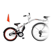 WeeRide Silver Co-Pilot Child Trainer