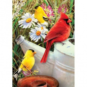 Royal Brush Garden Birds Mini Paint by Number Kit, 13cm by 18cm