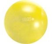Gymnic Plus Exercise Ball - 75cm/30 Dia.