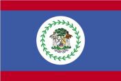 Annin Flagmakers 190588 1.5m X 2.4m Nyl-Glo Belize Flag