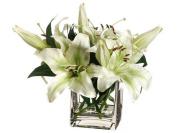 Allstate Floral WF3399-GR-WH 25cm . Hx 12 in. Wx 12 in. L Stargazer Lily in Vase Green White