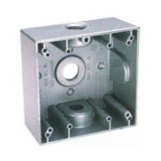 Teddico/Bwf Box 2G W/Prf W/9.5cm Ko TGB-75V